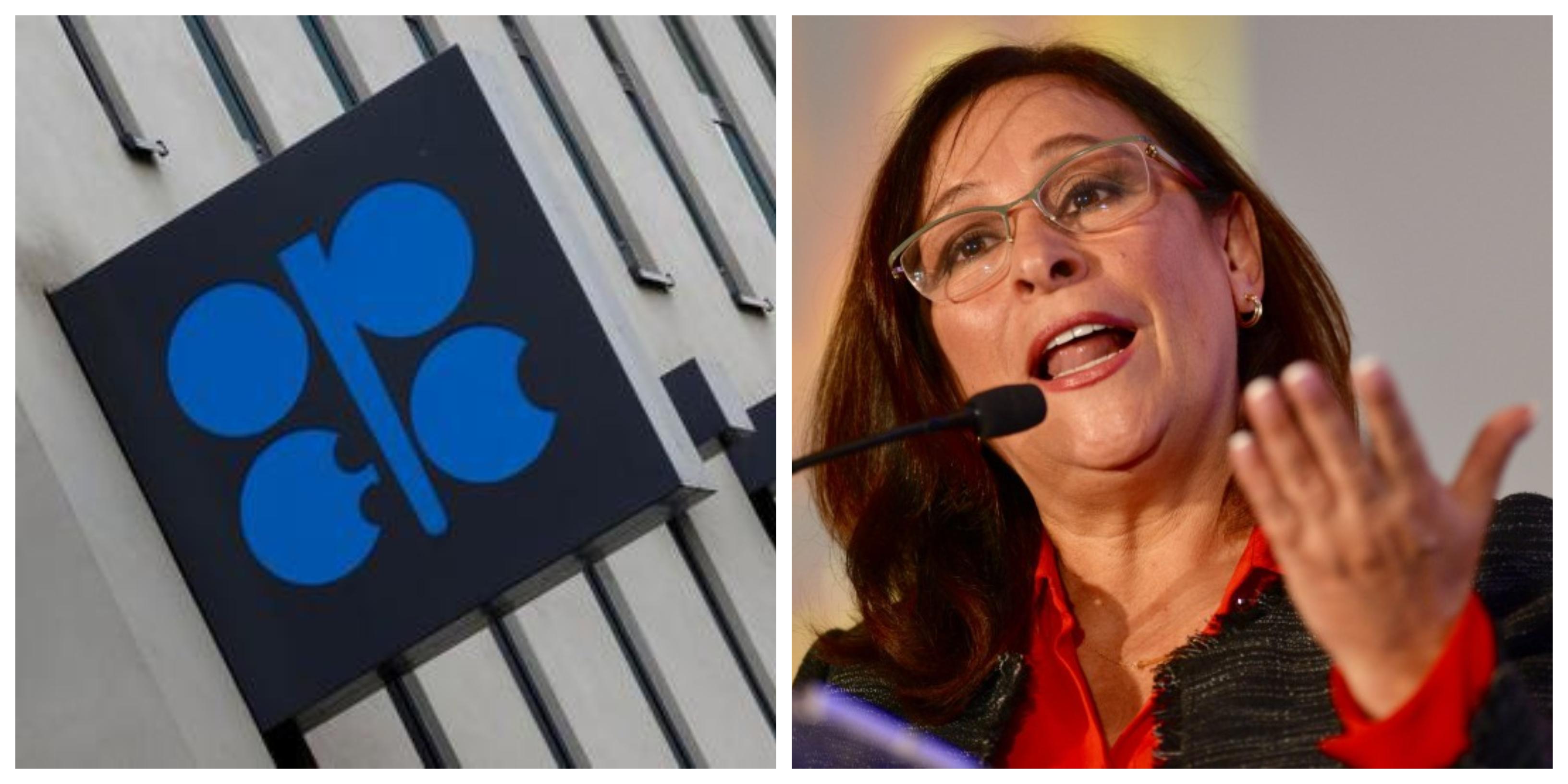 La secretaria de Energía rechazó recortar la producción de 400 mil barriles en el país (Foto: Especial)