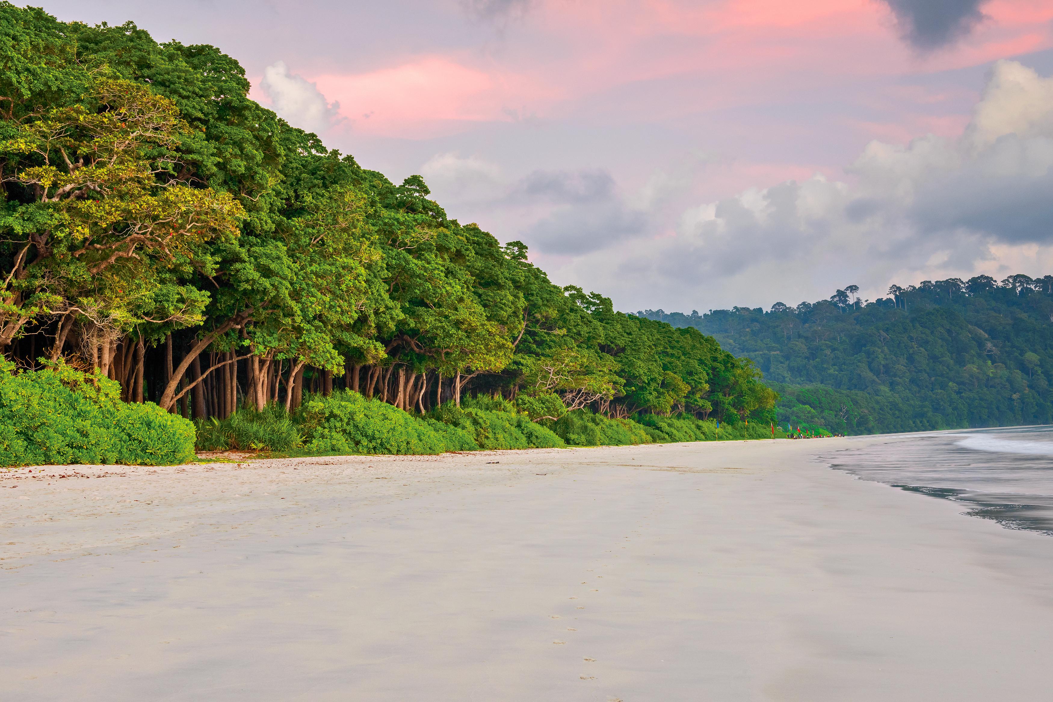 La playa de Radhanagar se encuentra en la hermosa isla de Havelock, la más grande de la cadena de islas que conforman el espectacular archipiélago de Andaman. Con su agua turquesa prístina, arena blanca cegadora y un telón de fondo salvaje y altísimo de la jungla, no es de extrañar que Radhanagar sea una de las playas más codiciadas