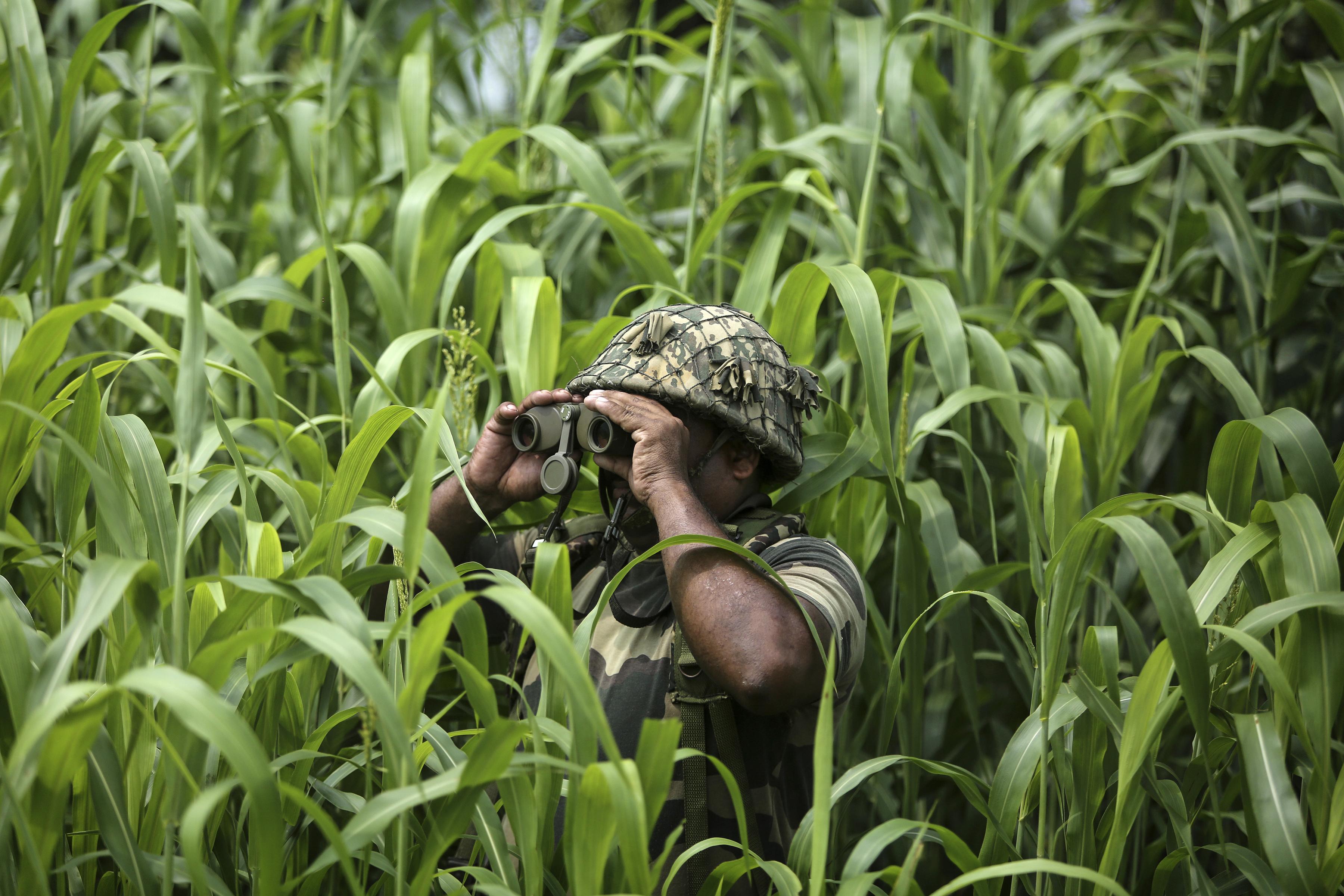 Un soldado de la Fuerza de Seguridad Fronteriza de la India (BSF) vigila cerca de la frontera entre India y Pakistán en Garkhal en Akhnoor, a unos 35 kilómetros (22 millas) al oeste de Jammu, India, el 13 de agosto de 2019. (Foto AP / Channi Anand)