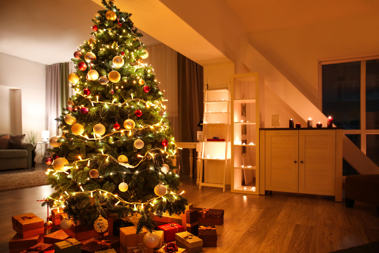 Cuál Es El Significado Del árbol De Navidad Y Por Qué Se Arma El 8 De Diciembre Infobae