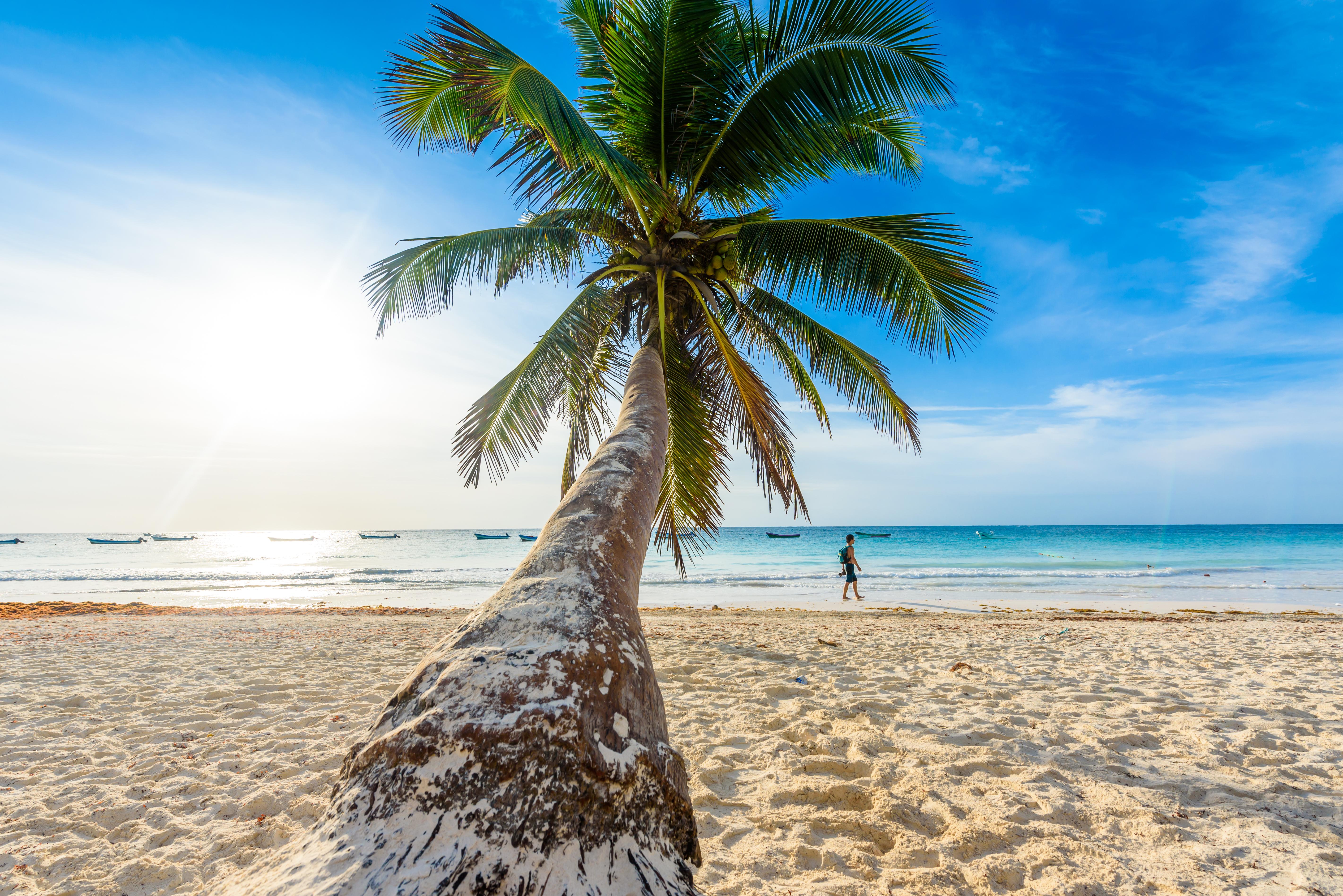 Playa Paraíso en la Riviera Maya es un destino de playa por excelencia para los viajeros que buscan la perfección. Impresionantes arenas blancas y brillantes aguas color verde azulado se combinan para crear una playa diferente a otras en México