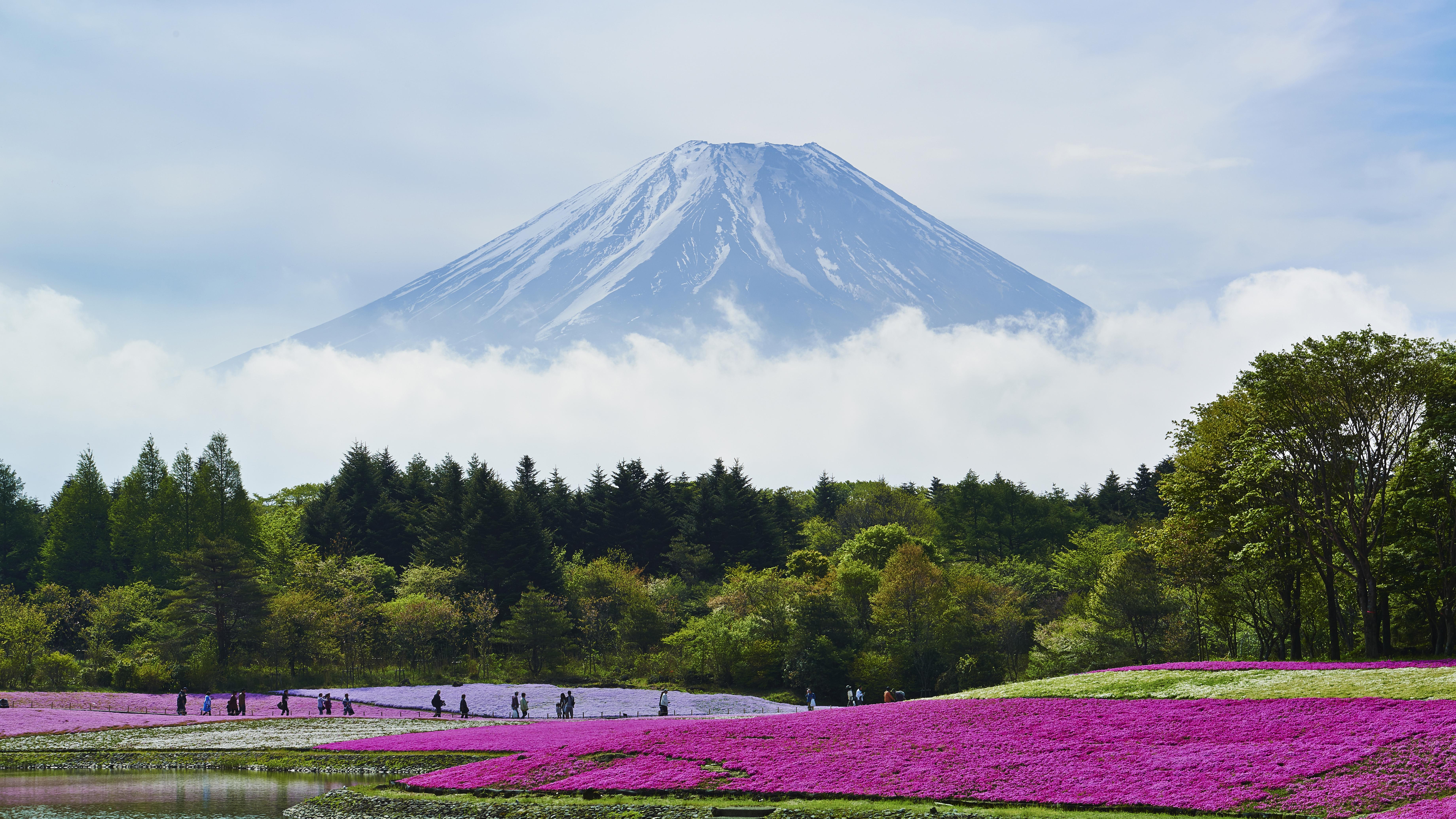 El monte Fuji se cierne sobre la ciudad de Saitama, cerca de Tokio, Japón