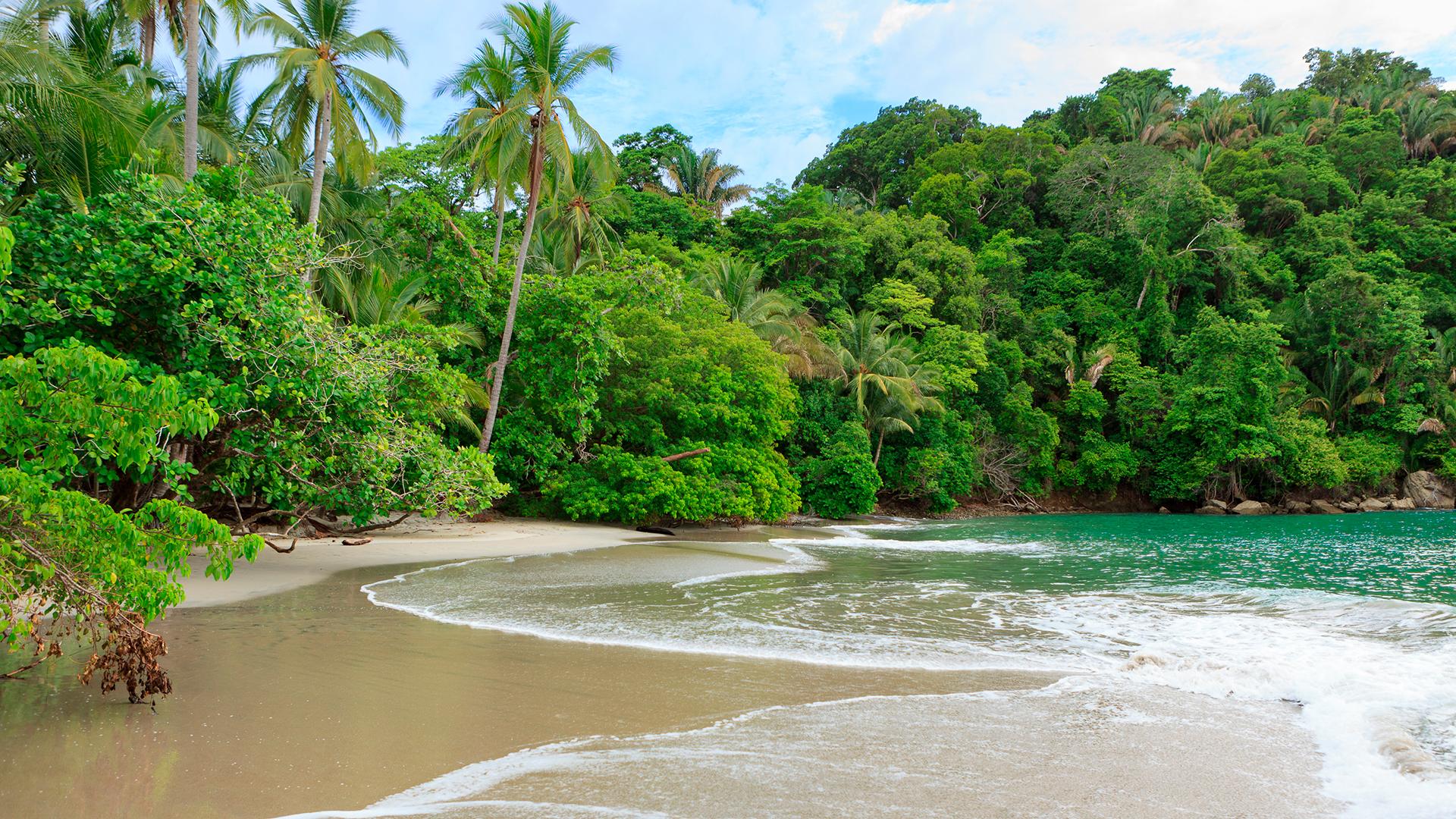 Ubicada dentro de un Parque Nacional, está a unos 100 kilómetros de San José. La playa, de aguas tibias, se fusiona con la zona montañosa, por lo que hay una gran presencia de variada vegetación y fauna. Un lugar perfecto para los amantes de la naturaleza