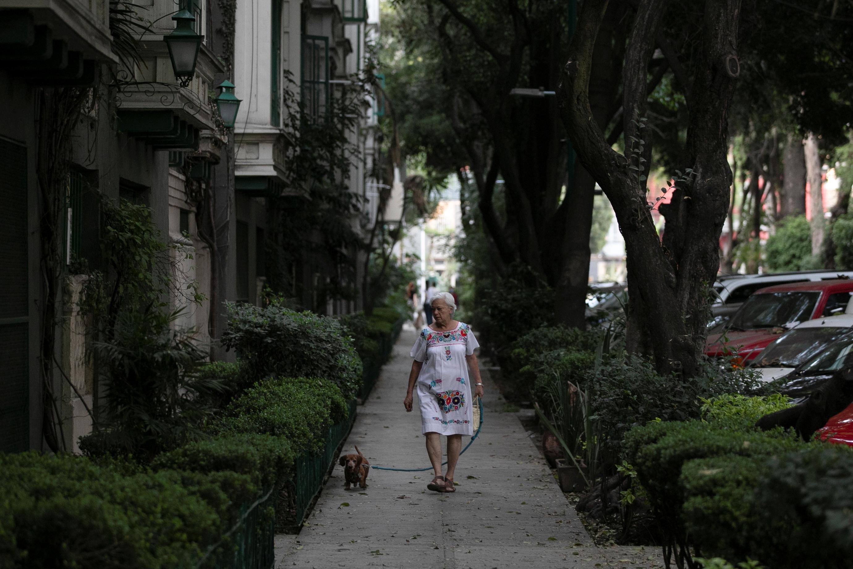 Una anciana camina con un perro en la calle después de que el gobierno de México declarara una emergencia de salud el lunes y emitiera normas más estrictas destinadas a contener la enfermedad de coronavirus de rápida propagación (COVID-19), en la Ciudad de México, México, 31 de marzo de 2020.