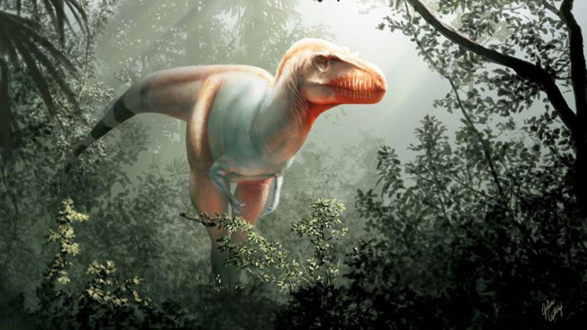 Cinco Asombrosas Nuevas Especies De Dinosaurios Descubiertas En El Ultimo Ano Infobae Dinosaurios vivos reales imagenes recopilacion. cinco asombrosas nuevas especies de