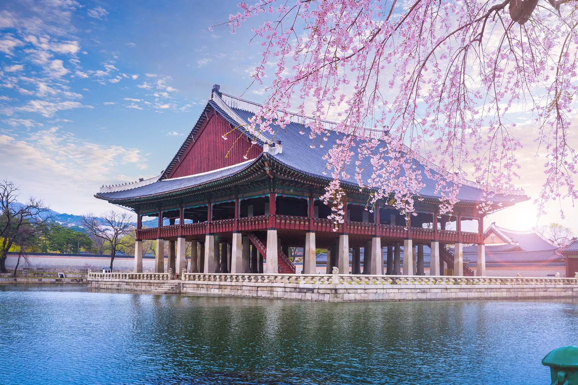 Siguiendo los pasos de otros destinos asiáticos como Japón y Taiwán, Corea del Sur es un destino fácil de recorrer, con una fantástica escena gastronómica y una historia fascinante en ciudades como Seúl