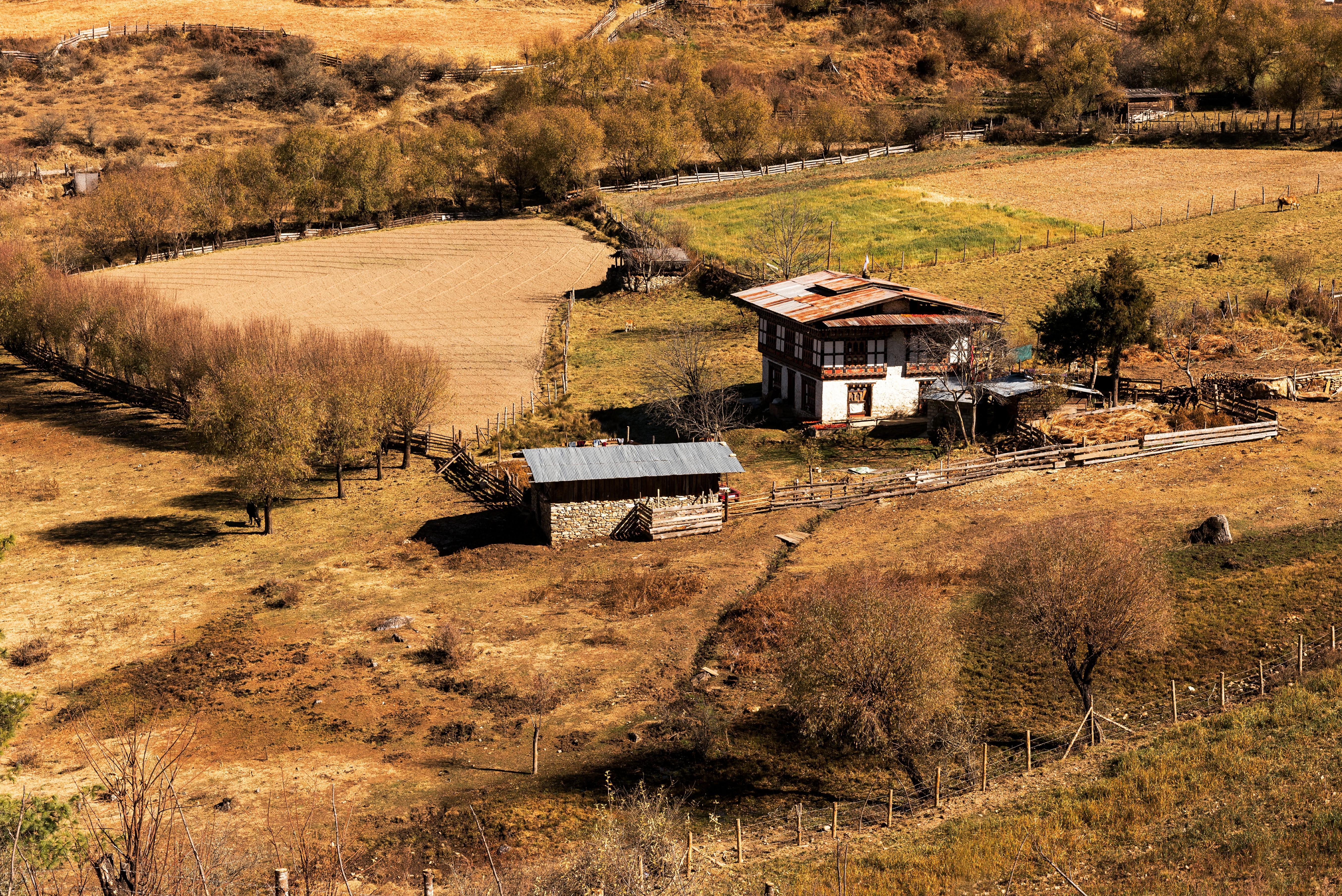 Bután tiene una población de poco más de 800.000 habitantes, de los cuales el 40% viven de la pequeña agricultura y ganadería, alejados de las ciudades