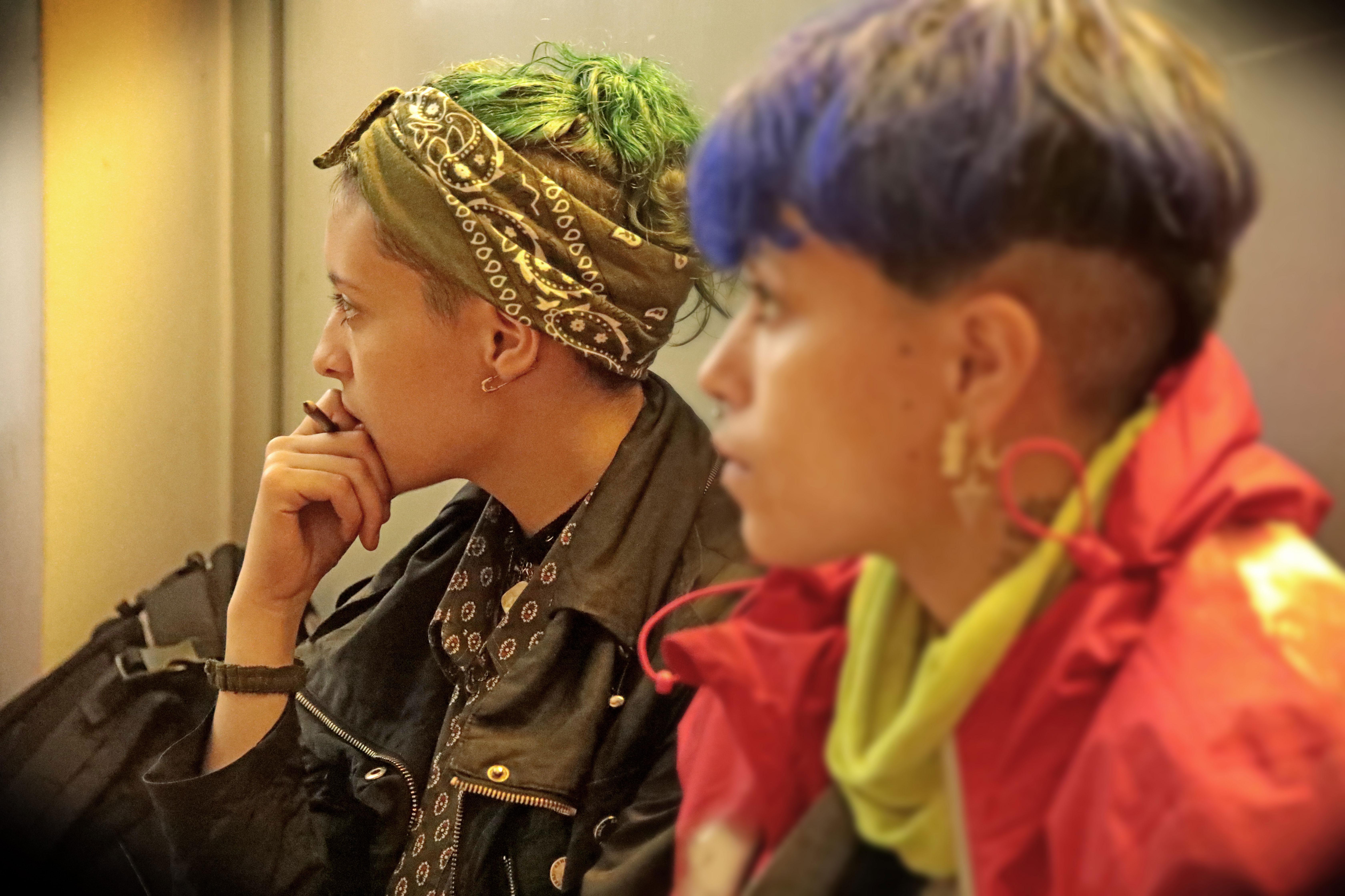 Este año hay 87 talleres oficiales que abarcan distintas temáticas de género, vinculadas a la salud, a la maternidad, aborto, adicciones, trabajo, Justicia y derechos humanos, mujeres campesinas, identidades disidentes, ecología, comunicación, nuevas tecnologías, entre otras