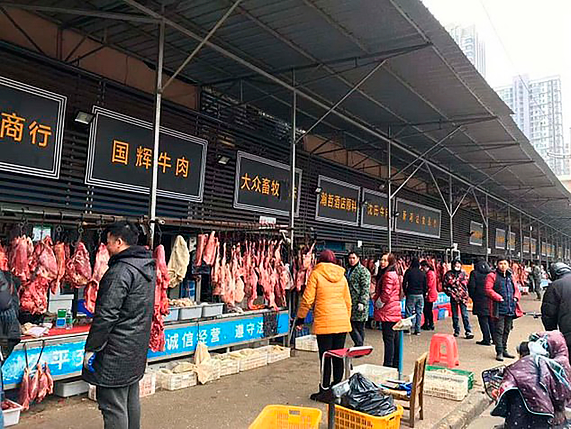 Por qué es tan difícil cerrar los mercados de animales salvajes ...