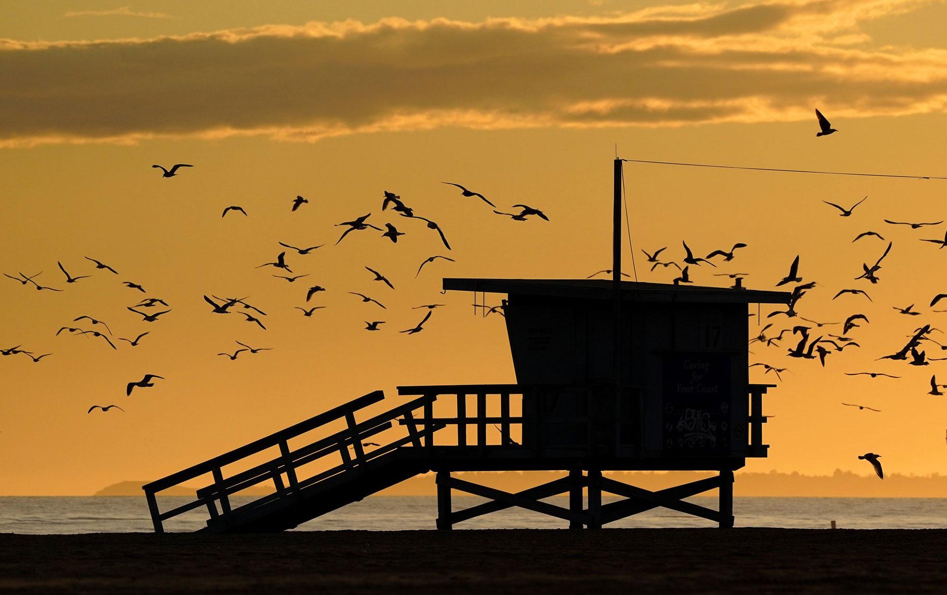 Las gaviotas vuelan alrededor de una estación de salvavidas vacía en Santa Monica, California, el viernes 10 de abril de 2020 (AP Photo / Mark J. Terrill)