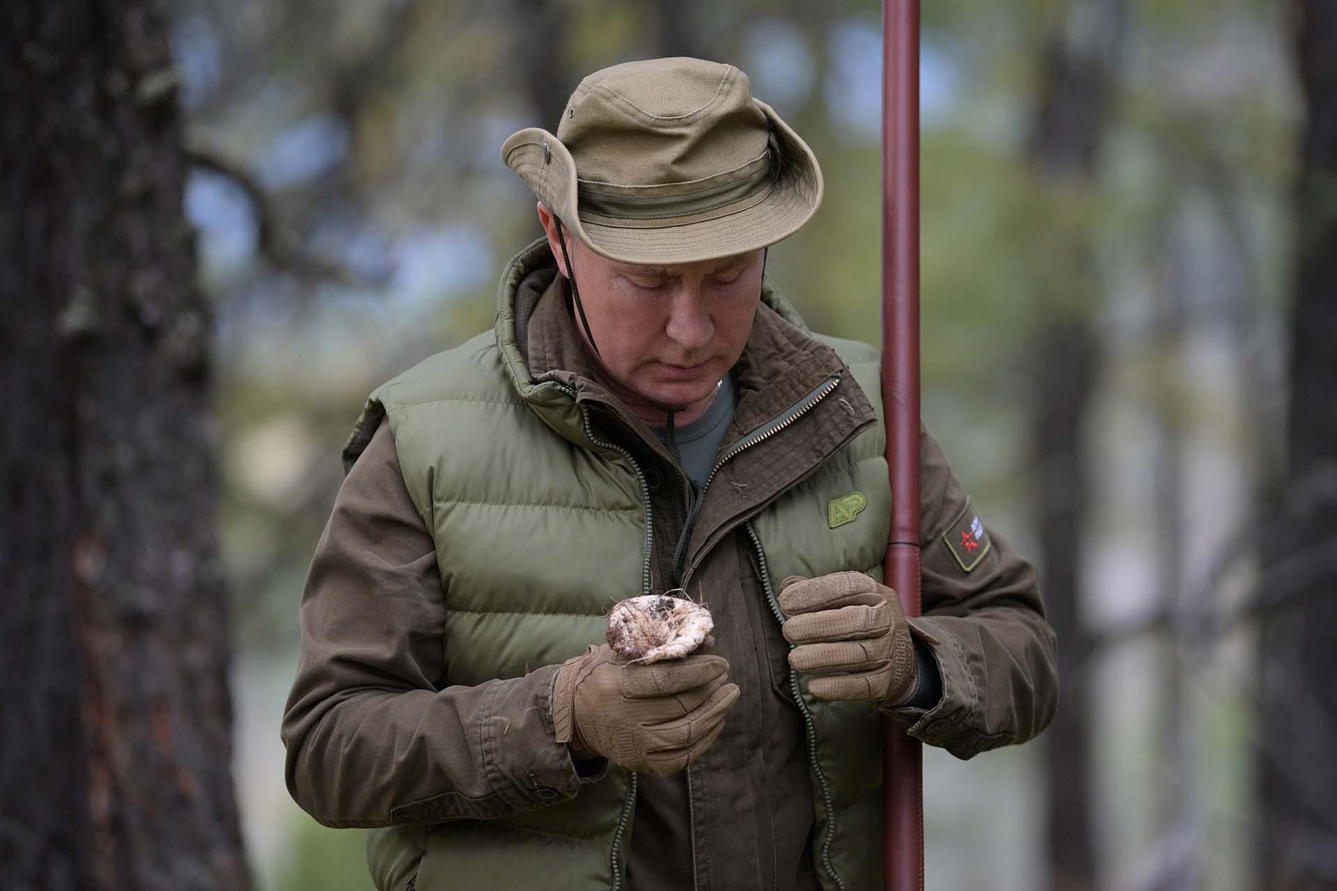 En las imágenes de vídeo publicadas por el Kremlin, Putin y Shoigu fueron mostrados recogiendo y oliendo hongos