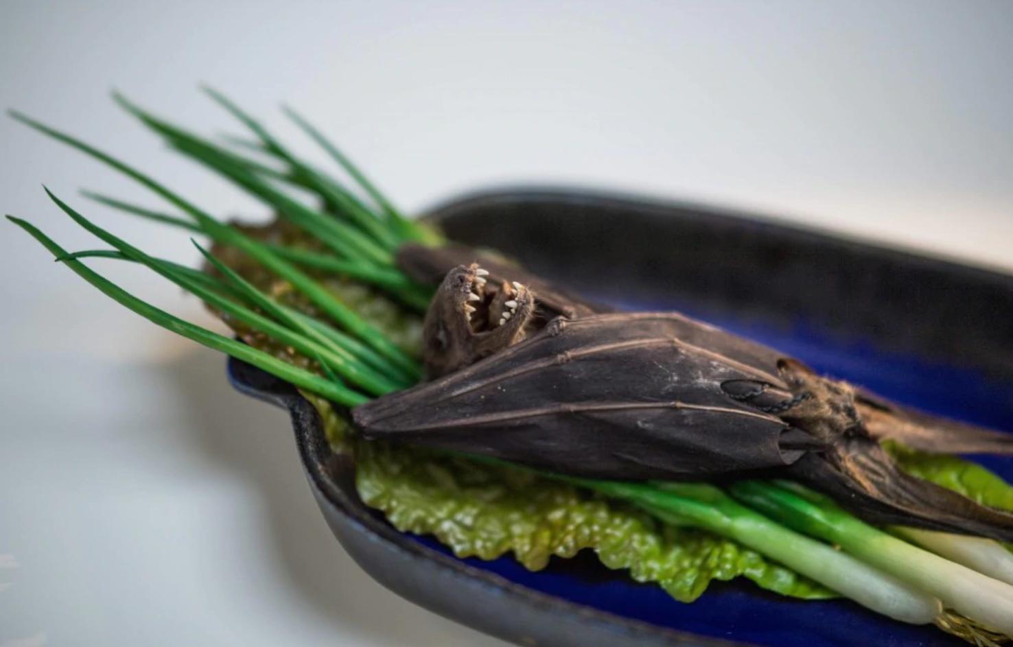 Los ingredientes para preparar la sopa de murciélago de frutas, algo que se come normalmente en Guam (Foto: AFP)