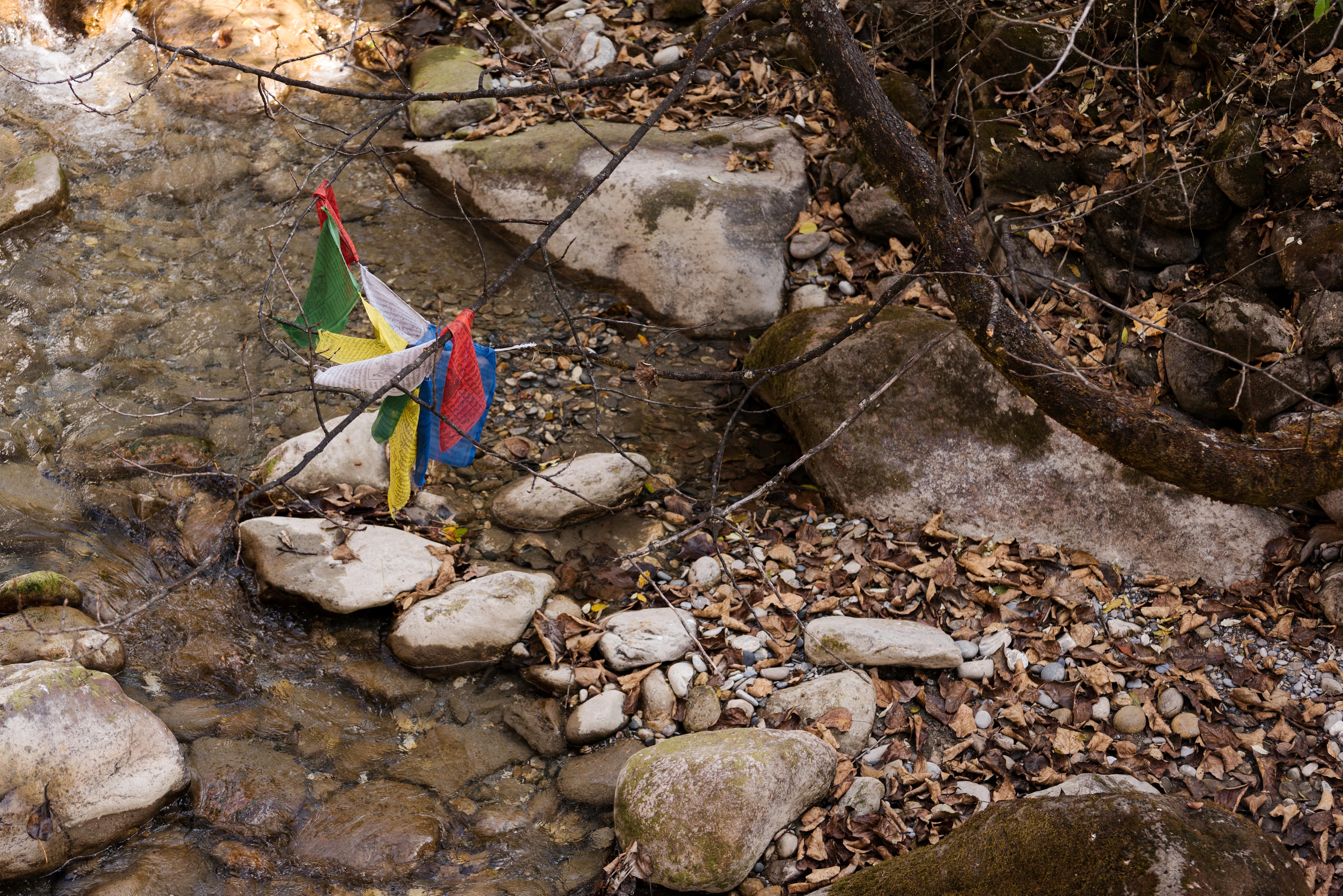 Cualquier lugar donde sople el viento, en medio de la naturaleza, es un buen sitio para colocar las banderas de oración budistas