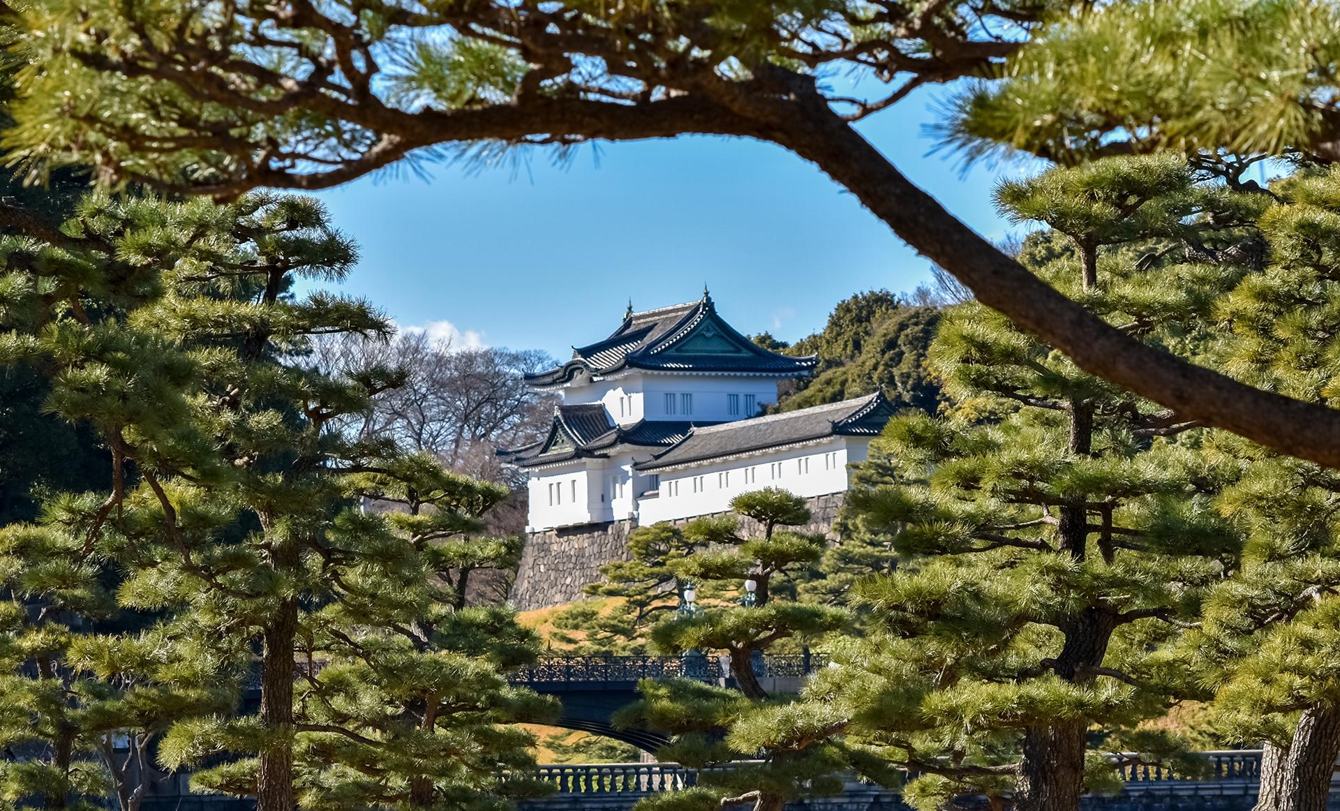 El Palacio Imperial, residencia del emperador de Japón, se construyó en el lugar donde se erigía el castillo de Edo, residencia del shogun antes de 1868