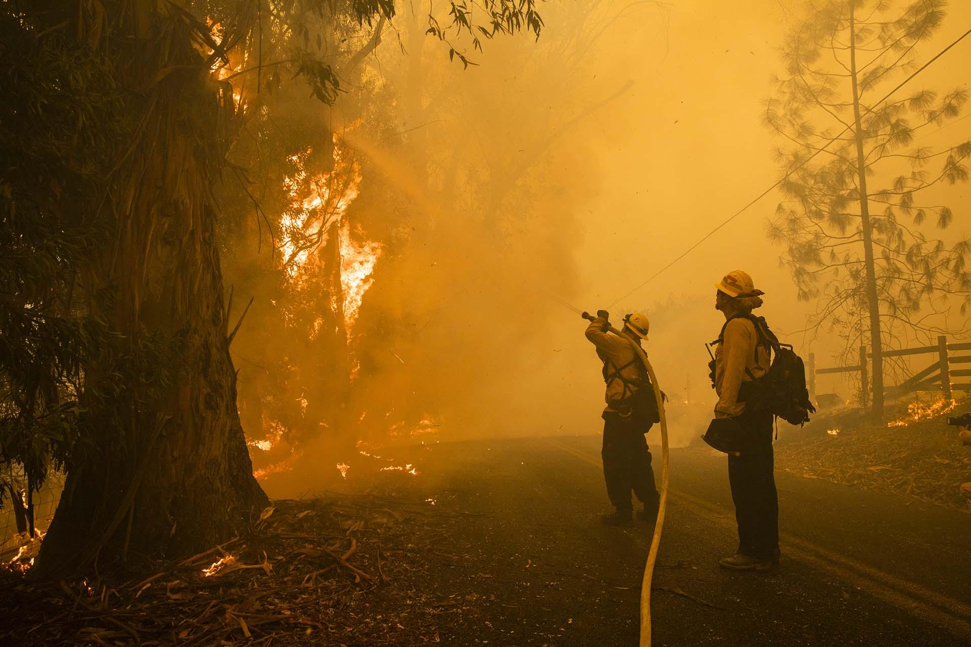 Los bomberos combaten el incendio de Kincade a lo largo de Chalk Hill Road en Healdsburg, California, el 27 de octubre de 2019. (Foto de Philip Pacheco / AFP)