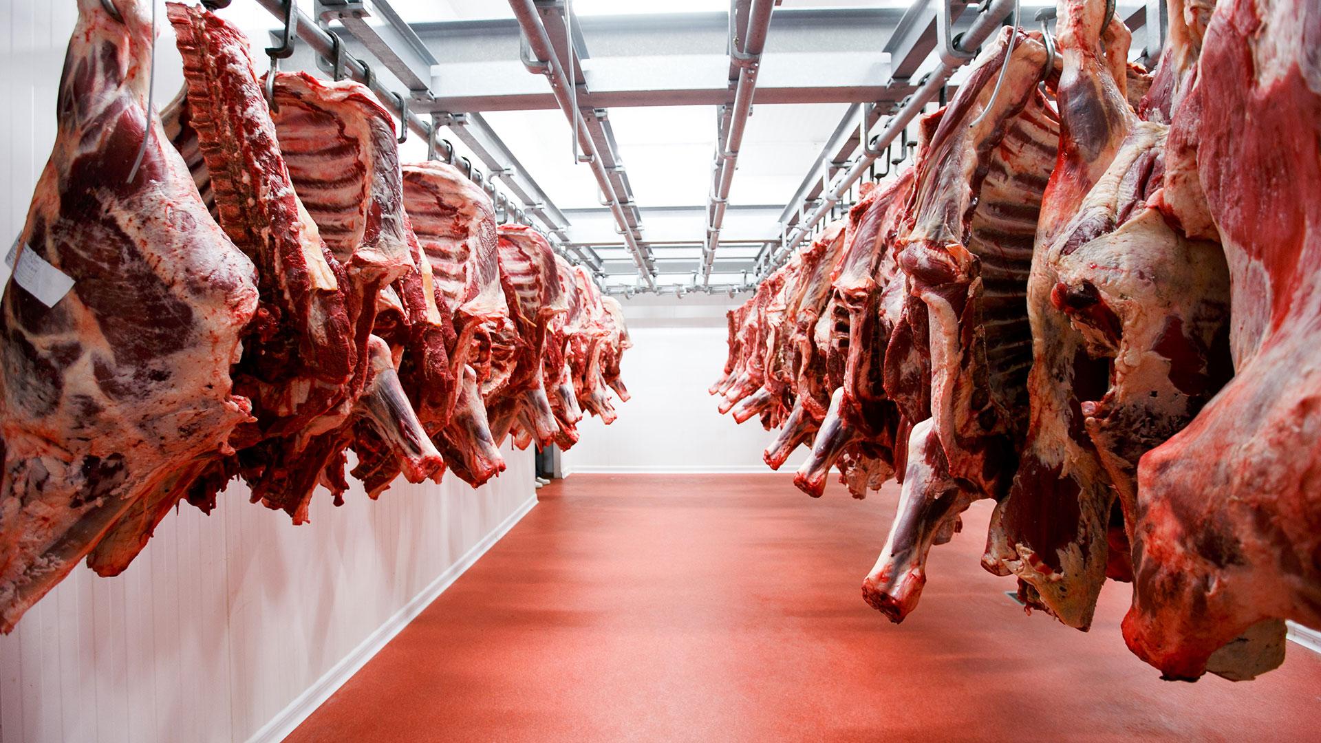 Argentina alcanzó el mayor volumen de exportaciones de carne vacuna de los  últimos 50 años - Infobae