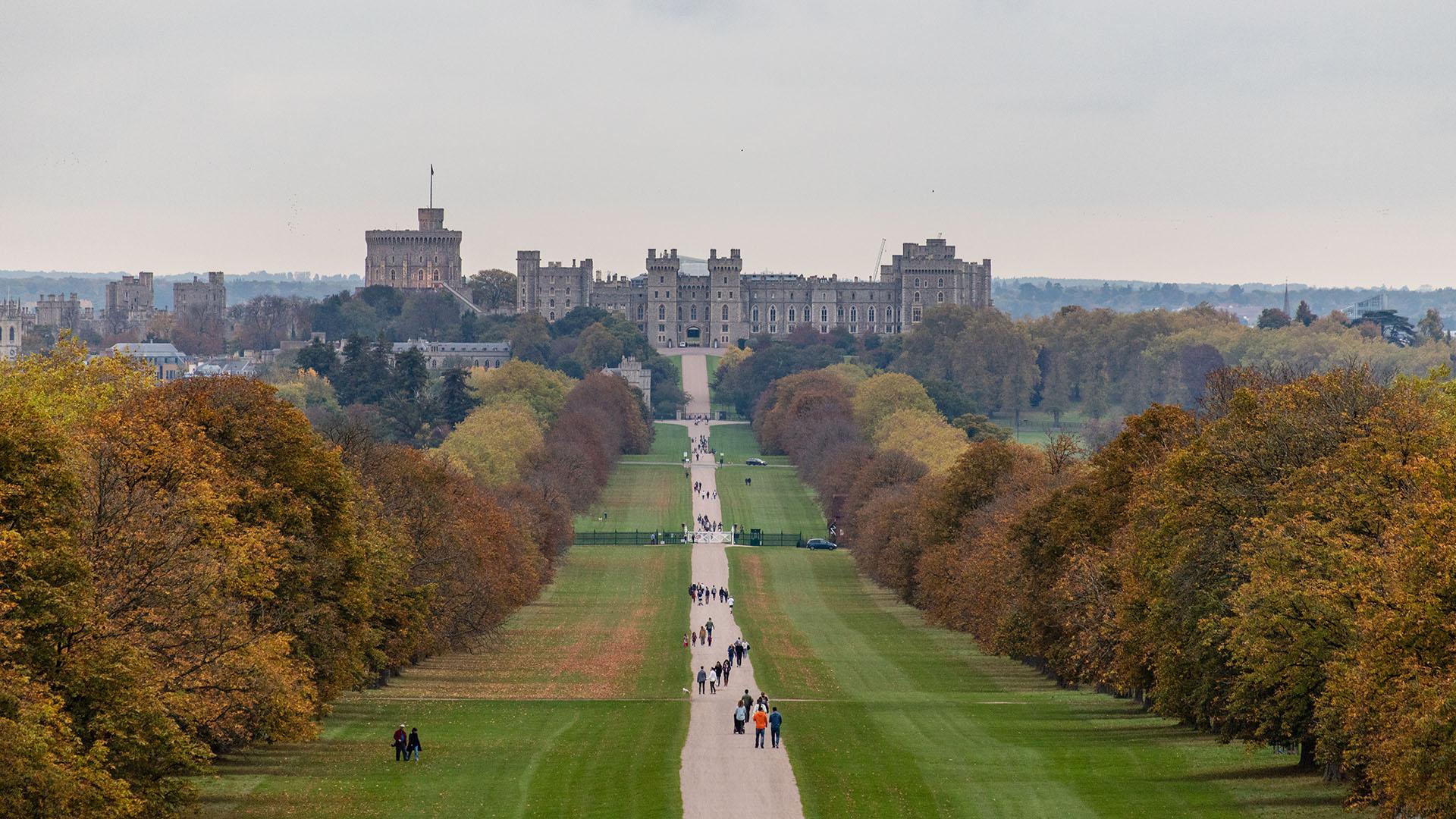 El emplazamiento del palacio de Windsor en una colina restringe el tamaño de sus jardines, que se extienden al este del castillo por un terreno aterrazado en el siglo XX