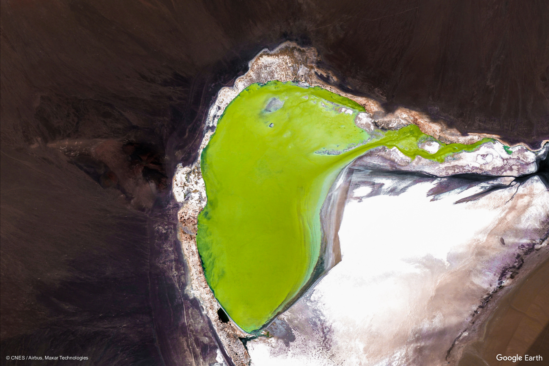Es el principal oasis de la Puna catamarqueña. Constituye, además, la cabecera departamental que se encuentra a mayor altitud en la provincia y la más alejada de la ciudad capital (San Fernando del Valle de Catamarca)