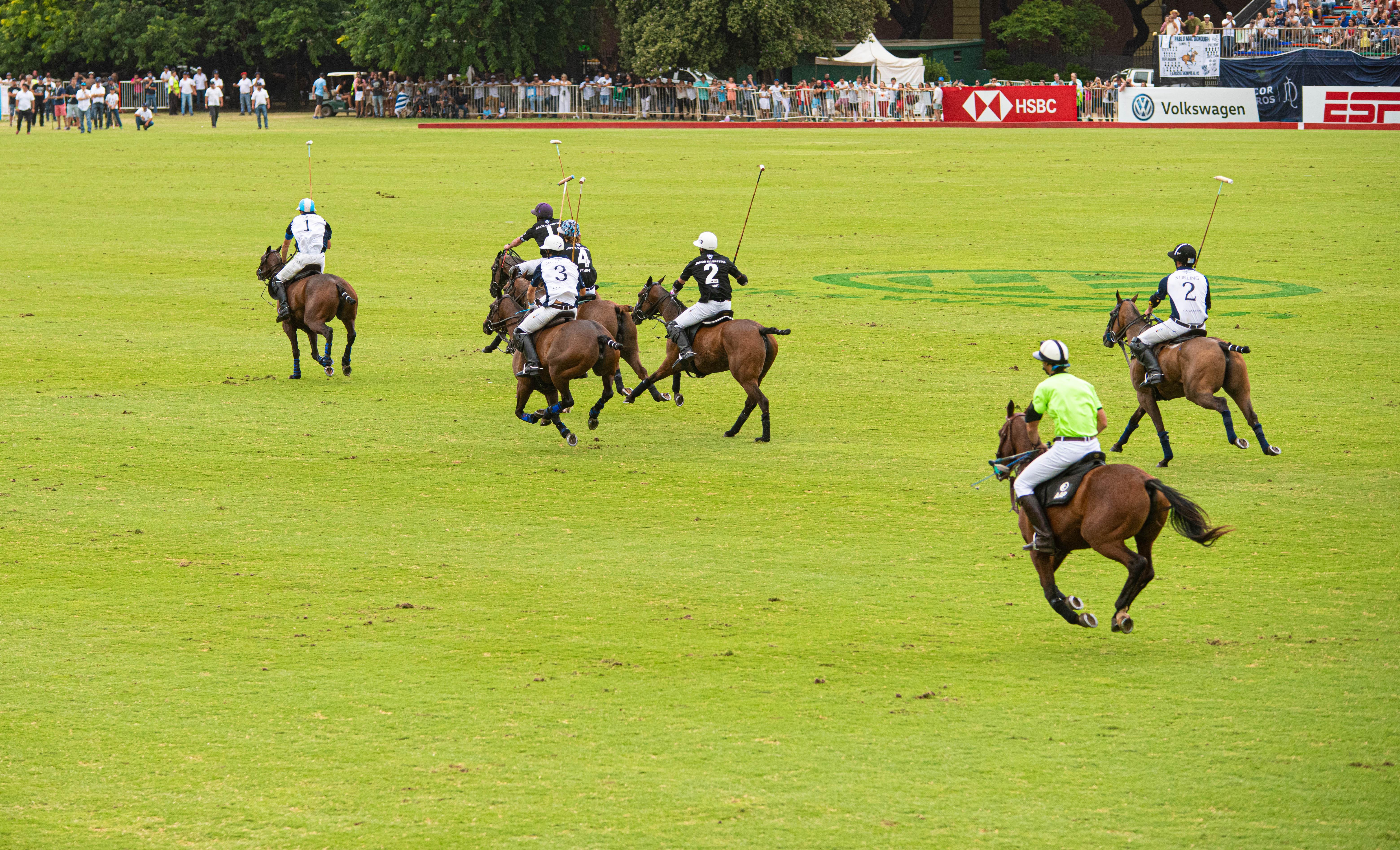 La gran final de La Dolfina vs Ellerstina en el Campo Argentino de Polo