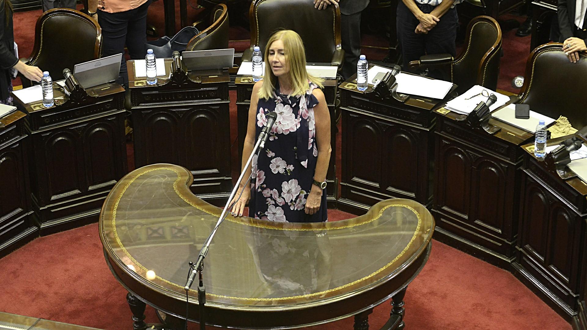 La jura de la legisladora oficialista Liliana Schwindt en reemplazo de Felipe Solá, que ejerce como Canciller