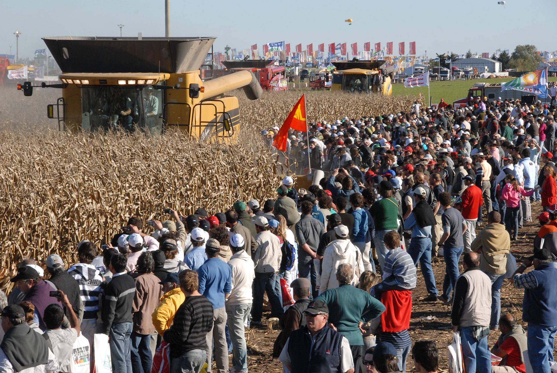El sector agropecuario aparece en el horizonte como la moneda de cambio para la reactivación de la economía argentina y el 2019 comenzó con noticias positivas de la mano de una muy buena cosecha